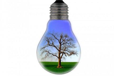 Ampoule électricien dole économies